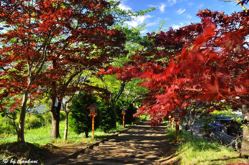 hureito Pagoda, Fujiyoshida