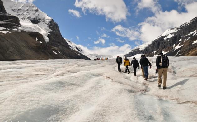 Glacier walk @ Athabasca Glacier