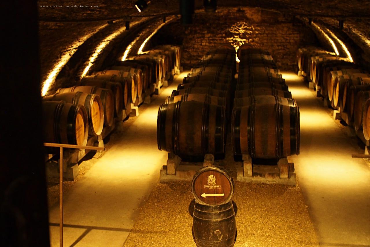 Patriarche wine tour